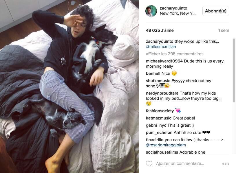 Le couple a emménagé dans un loft à New-York avec leurs 3 chiens : Noah, Skunk et Rocco