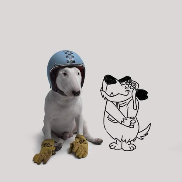 Le chien devient chanteur, super-héro, personnage de dessin animé …