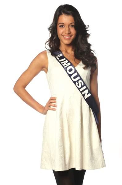 Caroline Dubreuil, Miss Limousin 2013