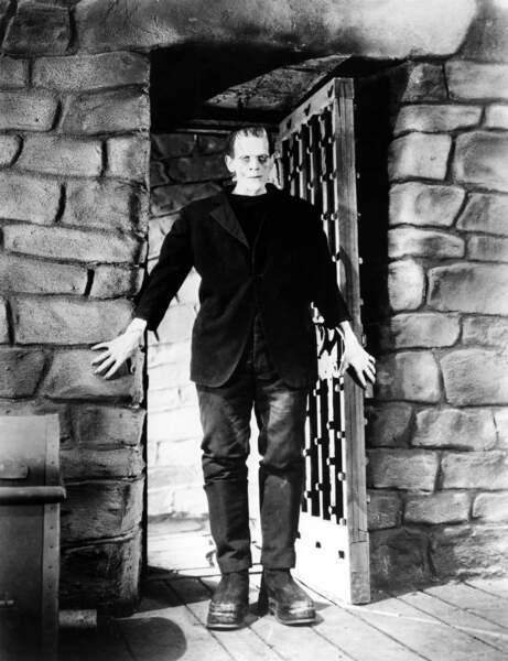 En 1931, James Whale se plonge dans le mythe de Frankenstein