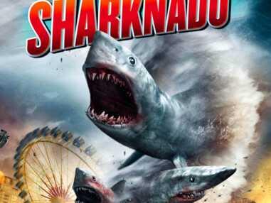 Sharknado, Sharktopus, Snow Shark... les pires films de requins
