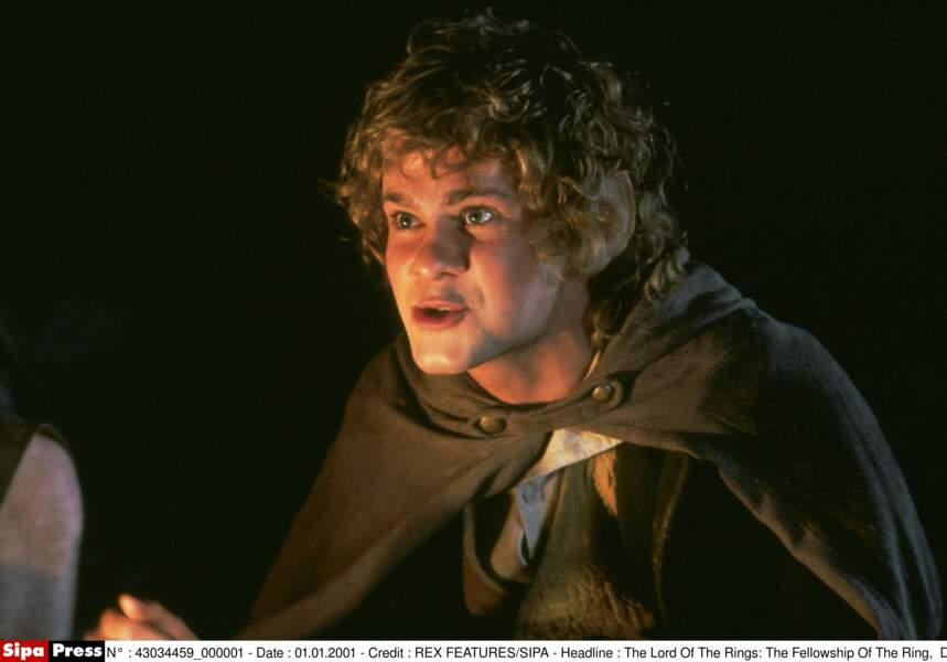 Dominic Monaghan interprétait le Hobbit Merry, l'autre compagnon de Frodon