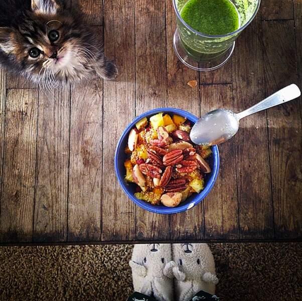 Et on peut même mixer les deux : un chat + un plat. Le combo parfait pour Instagram !