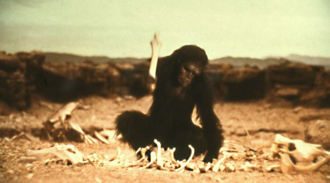 L'un des primates de 2001, L'Odyssée de l'espace (1968)