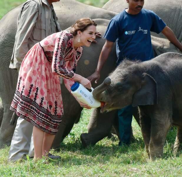 Kate apprend a donné à manger au petit éléphant