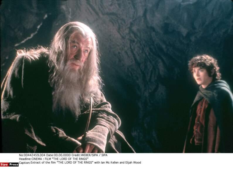 Le grand mage Gandalf le Gris avait les traits de Ian McKellen