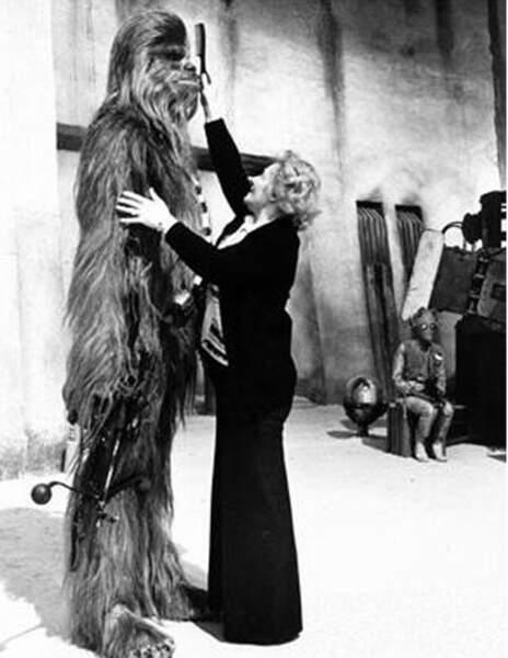 Pas simple à brosser ce Chewbacca