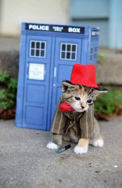 Armé de son tournevis sonique, le Docteur se prépare pour de nouvelles aventures...