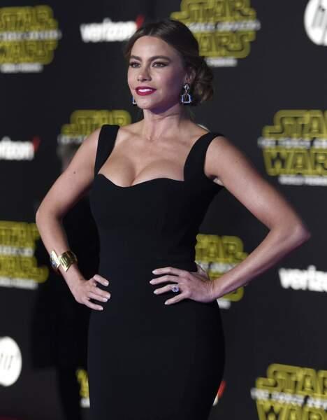 Sofia Vergara est l'actrice la mieux payée de la télévision, et ouais !