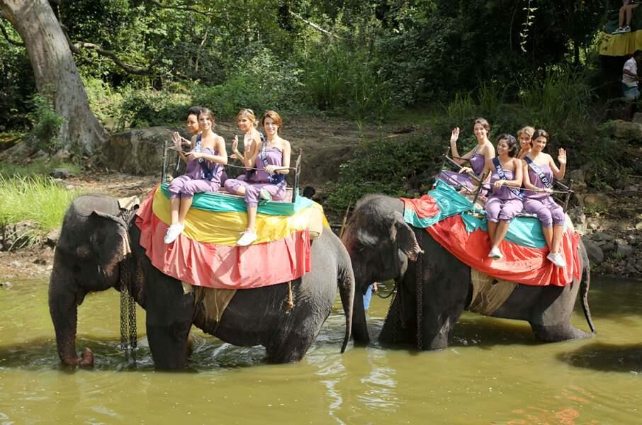 Miss Corse, Miss Champagne-Ardenne, Miss Pays-de-Savoie et Miss Cote d'Azur à dos d'éléphants