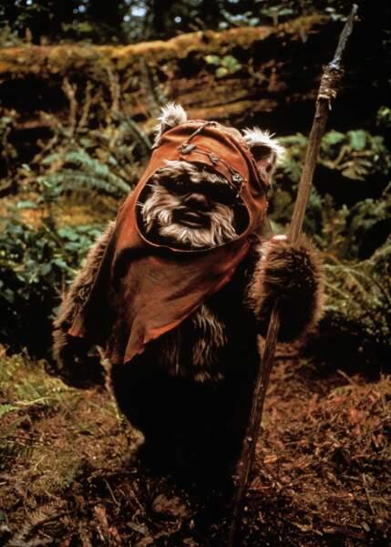 Les Ewoks (Star Wars) : Plus sympas que leurs cousins les Gremlins, ils sont en plus hyper écolos