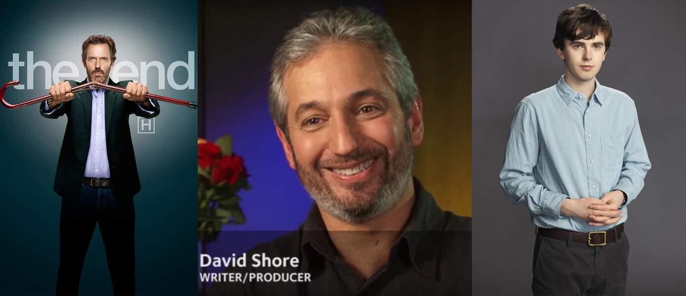 C'est David Shore, déjà l'auteur de Dr House en 2004, qui a adapté la série pour ABC.