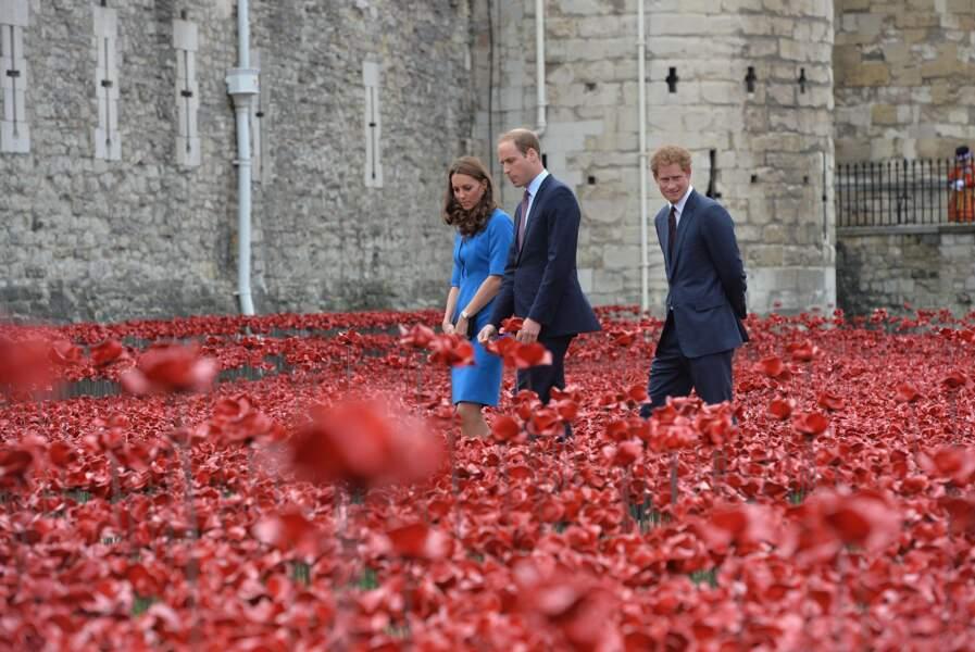 Devant la Tour de Londres, ils se promènent parmi les coquelicots, symboles des soldats britanniques de la guerre