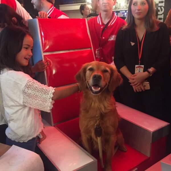 Scoop : le chien de Mika, nouveau coach de The Voice