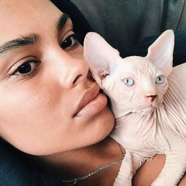 Elle vous présente son drôle de chat
