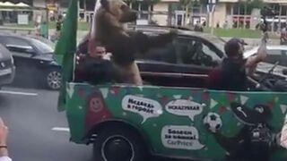 Coupe du Monde 2018 : quand un ours un peu grossier et muni d'un Vuvuzela célèbre la première victoire de la Russie... (VIDEO)
