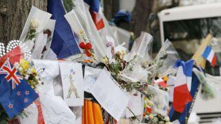 Attentats à Paris : France 2 déprogramme Ze Fiesta !, On n'est pas couché en direct