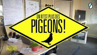 L'émission On n'est plus des pigeons sera de retour le...