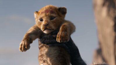 Le Roi Lion : la première bande-annonce du film avec Beyoncé et Donald Glover enfin dévoilée (VIDEO)