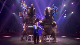 On vous recommande le Grands reportages de TF1 consacré à la magie du cirque !