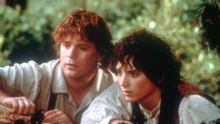 Le seigneur des anneaux : le retour du roi (TF1) : que sont devenus les acteurs ? (PHOTOS)