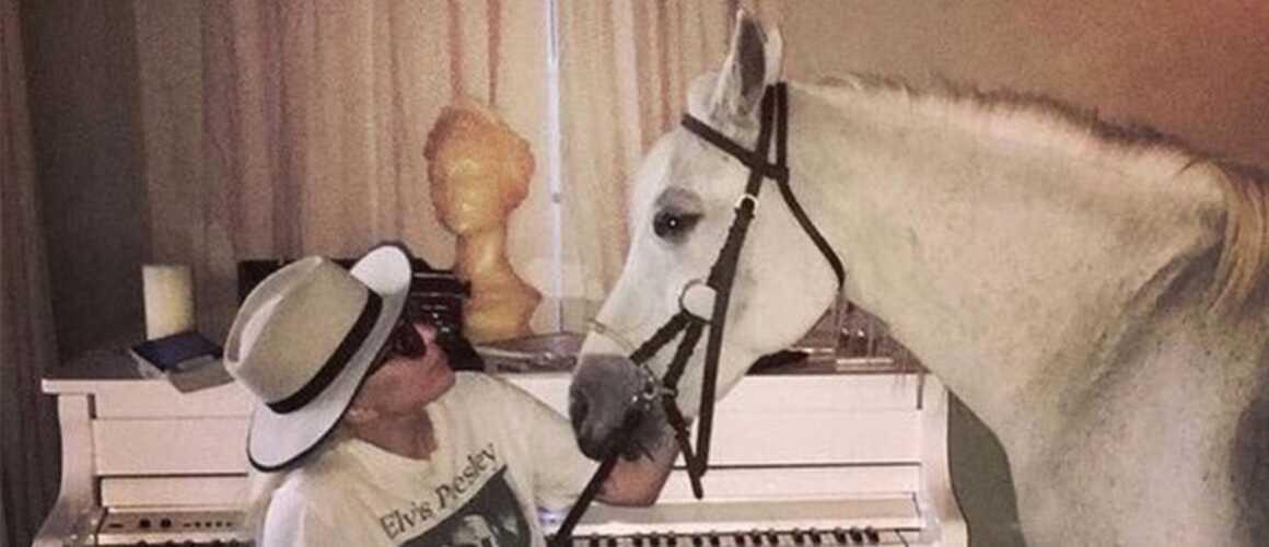 """Lady Gaga en deuil après la mort de sa jument Arabella : """"Quand elle souffrait, je souffrais aussi"""" (PHOTO)"""