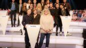 Le grand concours des animateurs (TF1) : qui a gagné le plus de fois ?
