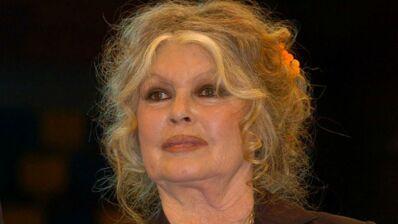 """Brigitte Bardot dérape dans une lettre ouverte et qualifie les Réunionnais de """"population dégénérée"""" aux """"gênes de sauvages"""""""