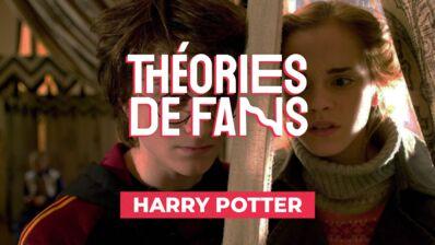 Théories de fans : et si Hermione était la soeur aînée et cachée d'Harry Potter ? (VIDÉO)
