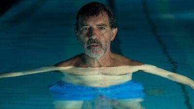 Douleur et gloire : 3 raisons d'aller voir le nouveau film de Pedro Almodóvar avec Antonio Banderas
