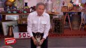 Affaire Conclue, le prime : Michel Drucker fait craquer les acheteurs avec sa chienne ! (VIDEO)
