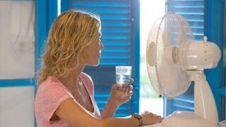 Canicule : Ventilateur, rafraîchisseur d'air ou climatiseur ? Lequel choisir pour se rafraîchir