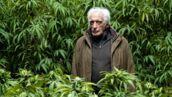 """Gérard Darmon (Family Business sur Netflix) : """"Je suis plutôt pour la légalisation du cannabis !"""""""