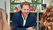 Le Prince Harry rallie un autre célèbre roux à sa cause ! (VIDEO)