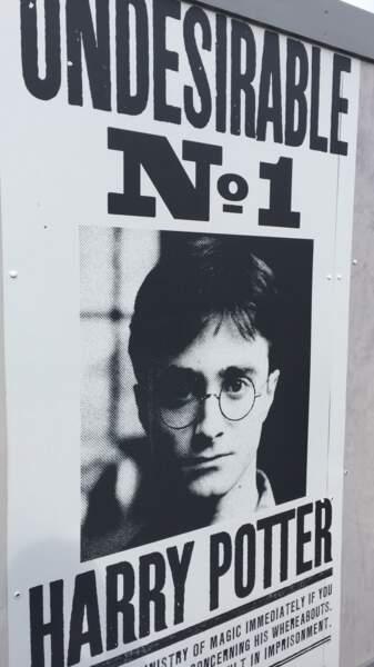 Vous cherchez Harry Potter ?
