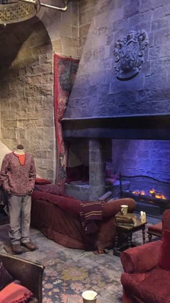 Ron au coin du feu