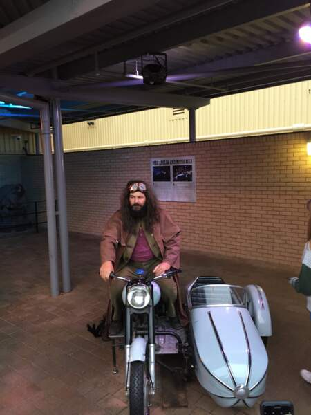 En voiture avec Hagrid