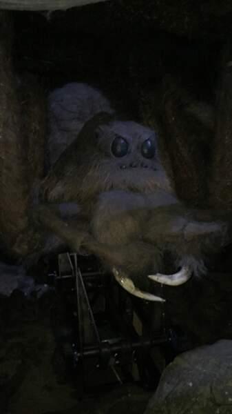Aragog, l'acromentule d'Hagrid