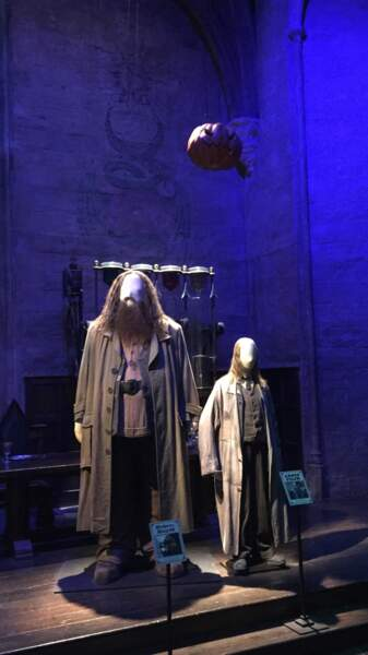 Hagrid et le professeur Filius