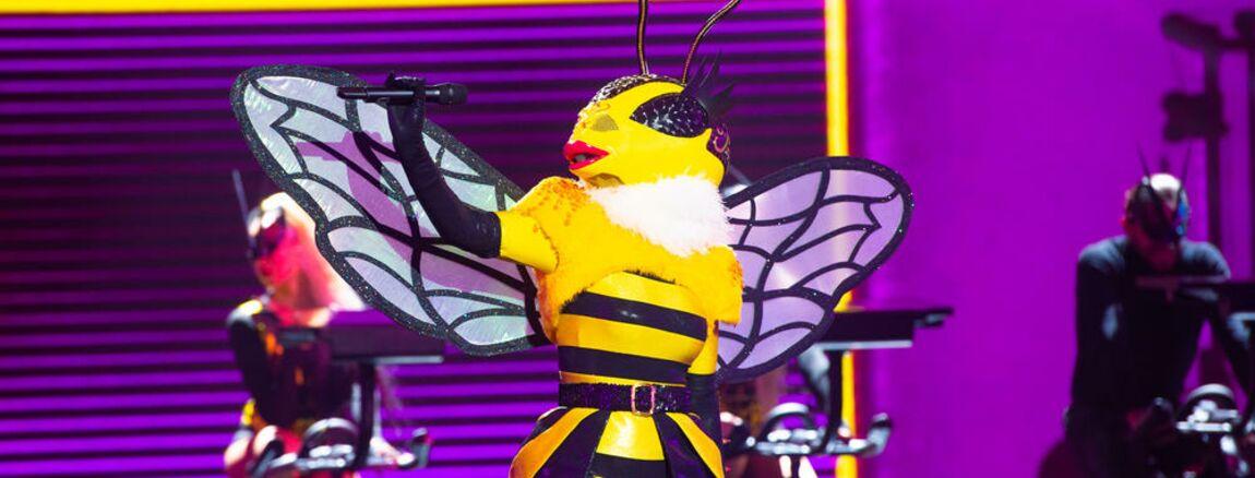 Mask Singer  découvrez le prix fou des costumes ! (VIDEO)