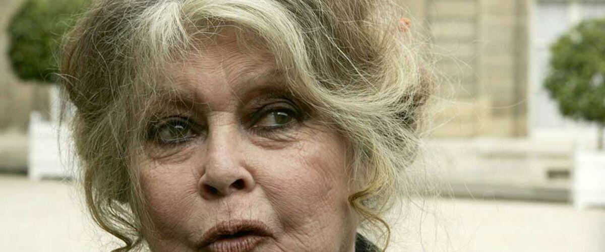 Brigitte Bardot : des transactions suspectes dans le viseur de la Cour des Comptes