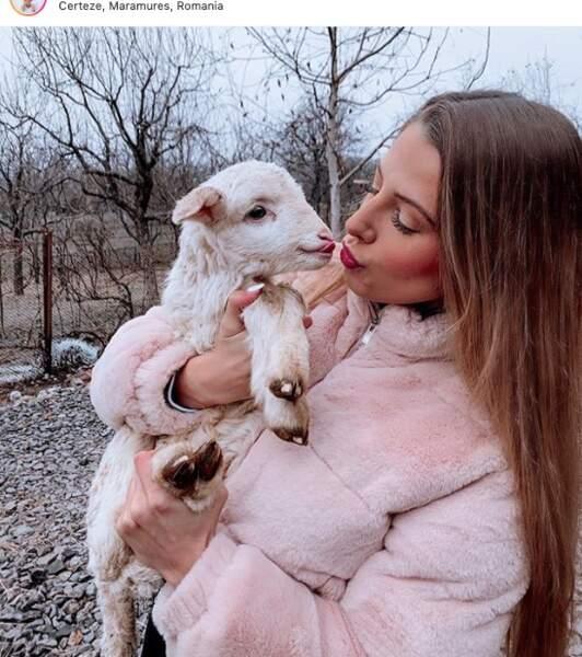 même les bisous aux agneaux !