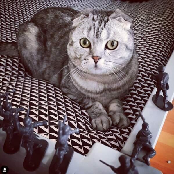 Et dans la vie de tout ce petit monde, un être prend beaucoup de place : c'est leur chat Berlioz.