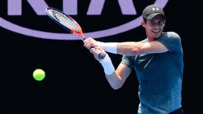 Open d'Australie : pourquoi les balles de tennis sont-elles jaunes et poilues ? (VIDEO)
