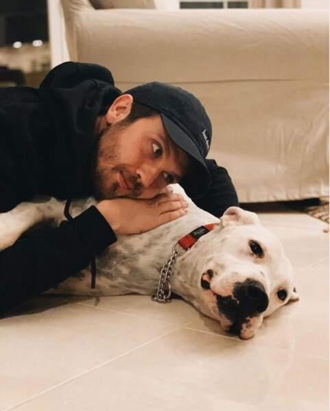 Sieste canine