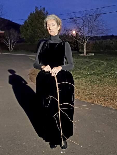 Céline Dion est méconnaissable pour Halloween !