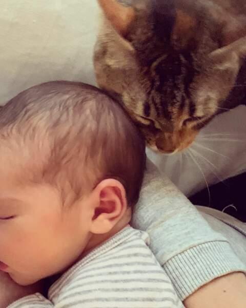 Selma, née le 2 octobre, est accueilli ici par son chat