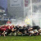 Programme TV Rugby Champions Cup : à quelles heures et sur quelles chaînes suivre Scarlets/Toulon, Wasps/Montpellier, UBB/Dragons, ASM/Munster, Harlequins/Racing 92 ?