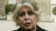 Brigitte Bardot : ses larmes de détresse après la perte d'un être cher