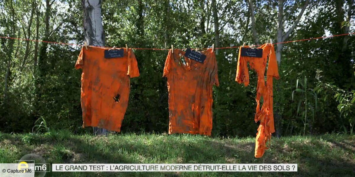 Exclu. E=M6 spécial agriculture : cette incroyable expérience réalisée par Mac Lesggy à l'aide... de t-shirts en coton ! (VIDEO) - Télé Loisirs.fr